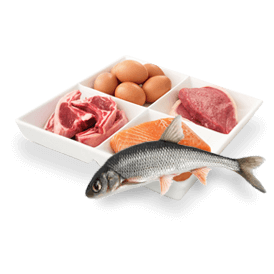 Fish eggs and Meat order now freshji online store